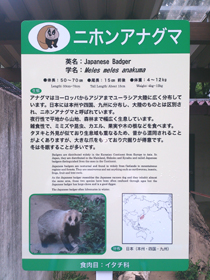 動物園 english hp upload.jpg